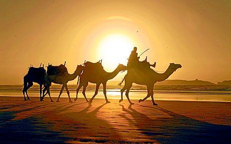 Dream Vacation Fridays Morocco Lush To Blush - Morocco vacation